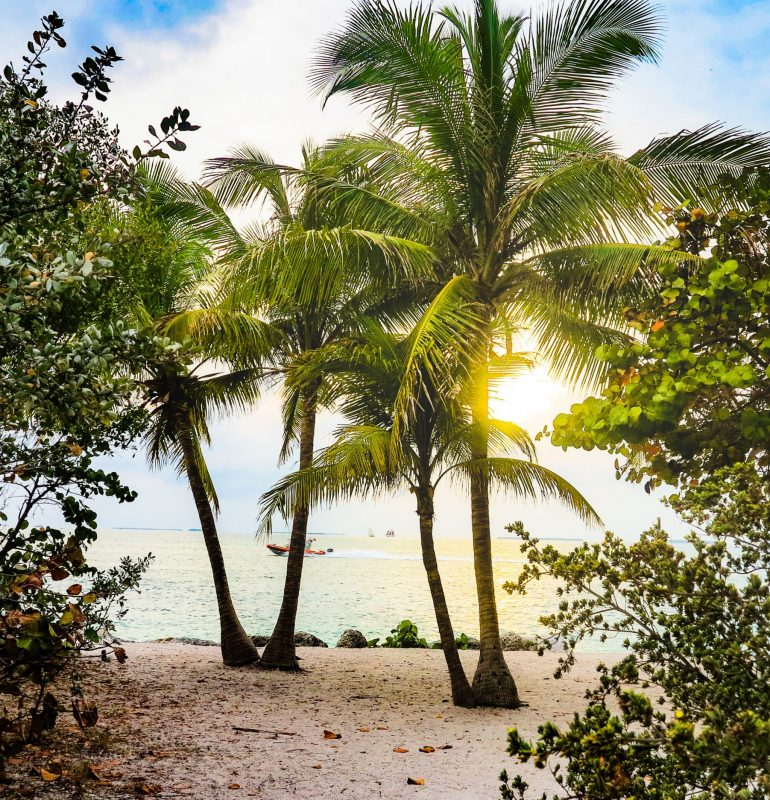 Beach vacation_naples beach vacation_naples florida