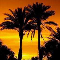 Naples Florida beach vacation_park shore beach rental_naples beach rental